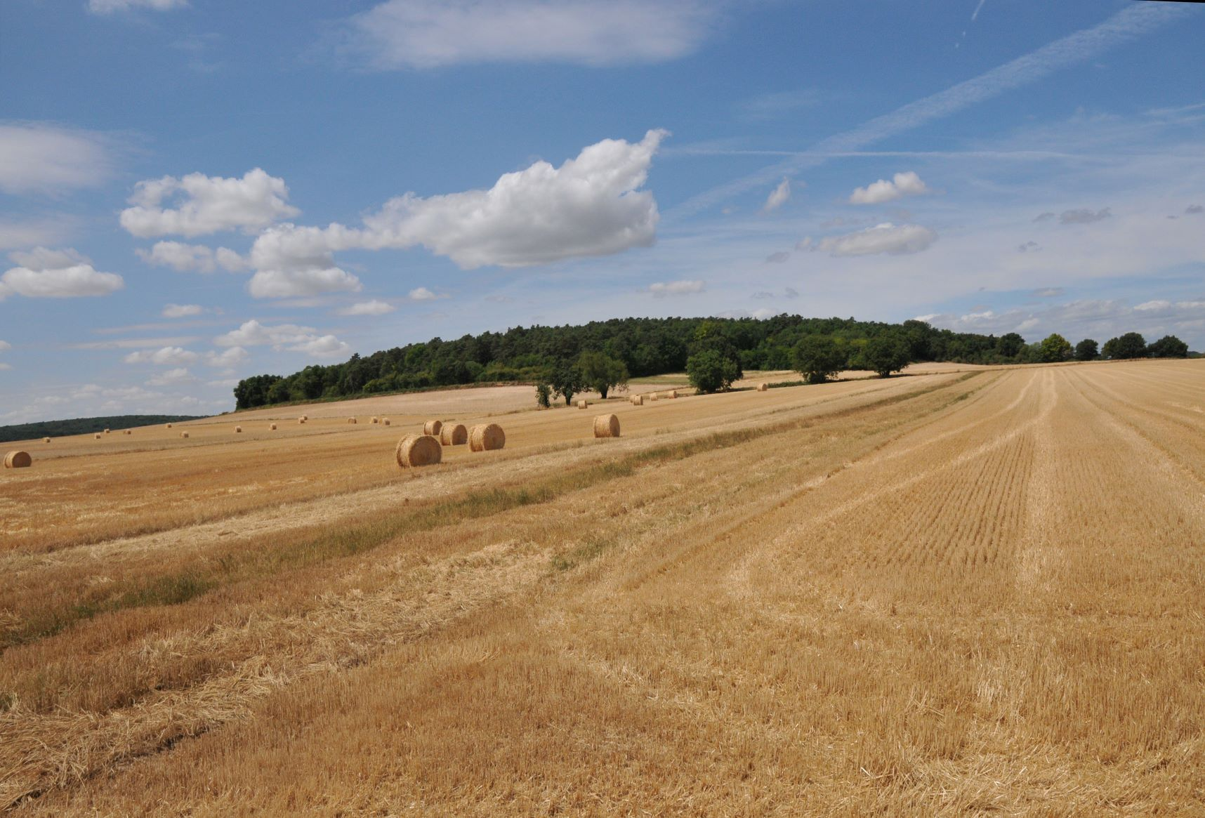 Nature-Roue-paille-champ-Moigny-JVA_0686