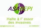 Logo Asabepi